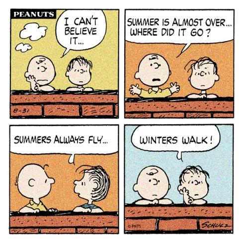 kesä menee siivillä