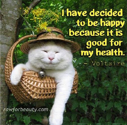 Olen päättänyt olla onnellinen sillä...