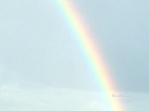 Sateenkaari2