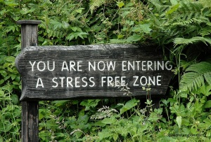 StressivapaaAlue